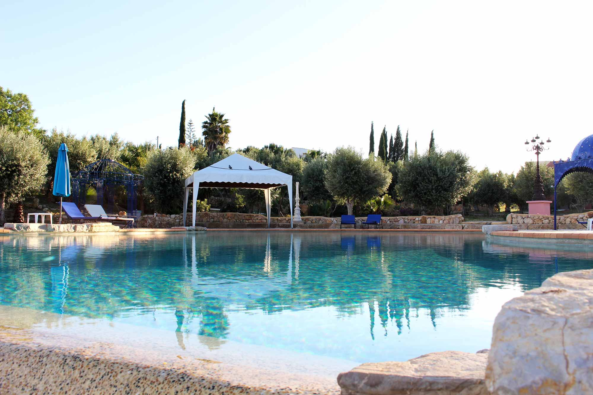 Infinity pool surrounded by olives trees
